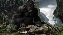 photo 16/360 - King Kong