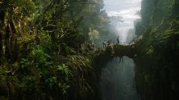 photo 14/360 - King Kong
