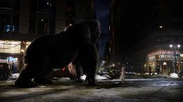 photo 61/360 - King Kong