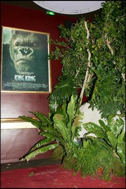 photo 263/360 - Avant-première de King Kong - Paris, le 10 Décembre 2005 - © Bertrand Rindoff Petroff - King Kong