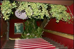 photo 264/360 - Avant-première de King Kong - Paris, le 10 Décembre 2005 - © Bertrand Rindoff Petroff - King Kong