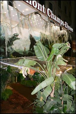 photo 267/360 - Avant-première de King Kong - Paris, le 10 Décembre 2005 - © Bertrand Rindoff Petroff - King Kong