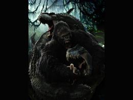 photo 81/360 - King Kong
