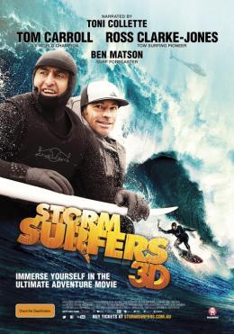 photo 2/2 - Storm Surfers 3D