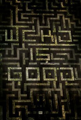 photo 41/49 - Le Labyrinthe - © 20th Century Fox