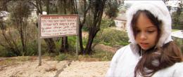 Dans un jardin je suis entré Yasmine Al-Azhari-Kadmon photo 2 sur 8