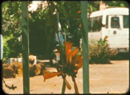 Dans un jardin je suis entré photo 7 sur 8