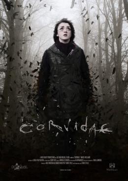 photo 1/1 - Corvidae