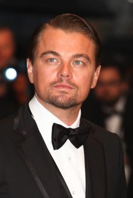 photo 131/145 - Leonardo DiCaprio - Montée des marches Gatsby le Magnifique - Cannes 2013 - Gatsby Le Magnifique - © Isabelle Vautier pour CommeAuCinema.com