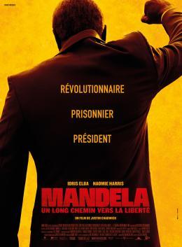 photo 32/32 - Mandela : Un long chemin vers la liberté - © Pathé Distribution