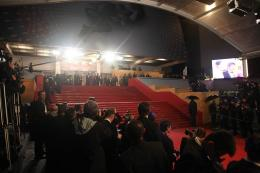 photo 14/17 - Pr�sentation de Tel P�re, Tel Fils - Cannes 2013 - Tel P�re, tel fils - © Isabelle Vautier pour CommeAuCin�ma.com