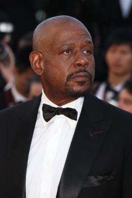 photo 30/36 - Forest Whitaker - Clôture du Festival de Cannes 2013 - Zulu - © Isabelle Vautier pour CommeAuCinema.com
