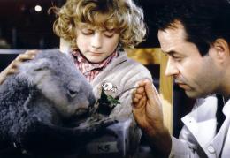 Moritz Mack Le koala, mon papa et moi photo 7 sur 7