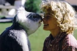Moritz Mack Le koala, mon papa et moi photo 3 sur 7