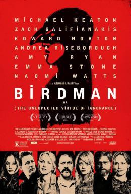 photo 42/43 - Birdman