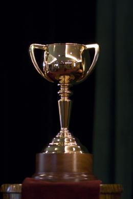 photo 34/118 - The Cup - © F.I.P.