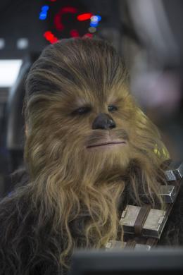 Peter Mayhew Star Wars - Le Réveil de la Force photo 1 sur 4