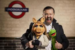 photo 2/17 - Muppets most wanted
