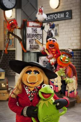 photo 3/17 - Muppets most wanted