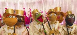 photo 6/17 - Muppets most wanted