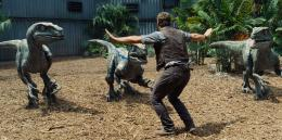 photo 30/67 - Chris Pratt - Jurassic World - © Universal Pictures International France