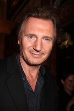 photo 38/45 - Liam Neeson - Présentation du film Third Person - Toronto 2013 - Puzzle - © Isabelle Vautier pour CommeAuCinema.com