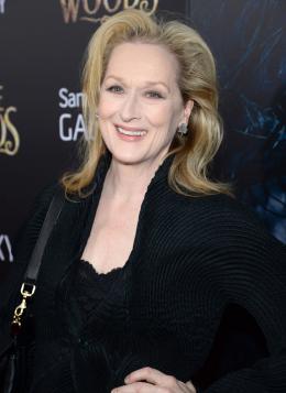 photo 28/60 - Meryl Streep - Avant-premi�re mondiale - Into the Woods - Promenons nous dans les Bois - © Walt Disney Studios Motion Pictures France