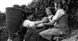 photo 7/9 - Jan Dieter Schneider, Antonia Bill, Philine Lembeck - Heimat 2 - L'Exode - © Les Films du Losange