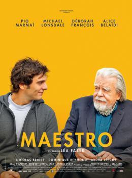 Maestro photo 10 sur 11