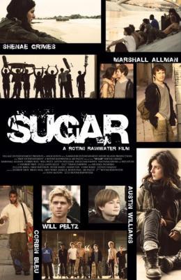 photo 2/2 - Sugar