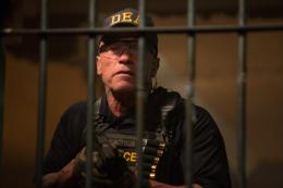 photo 10/24 - Arnold Schwarzenegger - Sabotage - © Metropolitan Film