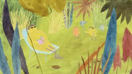 photo 2/7 - Une journée chez les oiseaux - Les Amis Animaux - © Les Films du Préau