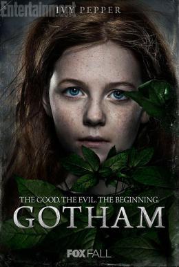 Clare Foley Gotham photo 4 sur 7
