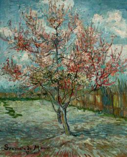 photo 7/36 - Vincent, la vie et la mort de Vincent Van Gogh - © Films Sans Frontières