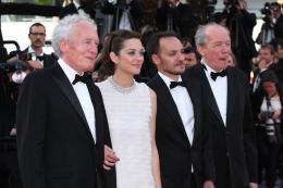 photo 91/393 - Mont�e des marches pour Deux jours, une nuit au 67�me Festival International du Film de Cannes 2014 - Marion Cotillard - © Isabelle Vautier pour CommeAuCinema.com