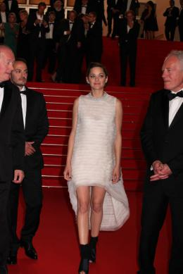 photo 71/379 - Mont�e des marches pour Deux jours, une nuit au 67�me Festival International du Film de Cannes 2014 - Marion Cotillard - © Isabelle Vautier pour CommeAuCinema.com