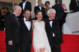 photo 72/379 - Mont�e des marches pour Deux jours, une nuit au 67�me Festival International du Film de Cannes 2014 - Marion Cotillard - © Isabelle Vautier pour CommeAuCinema.com