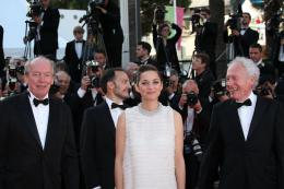photo 163/460 - Montée des marches pour Deux jours, une nuit au 67ème Festival International du Film de Cannes 2014 - Marion Cotillard - © Isabelle Vautier pour CommeAuCinema.com