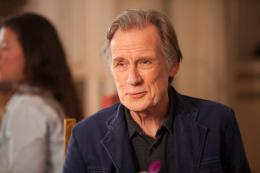 photo 30/44 - Bill Nighy - Indian Palace - Suite Royale - © 20th Century Fox