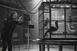 Tim Burton Miss Peregrine et les Enfants Particuliers photo 4 sur 150