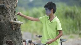Un Été à Quchi Liang-yu Yang photo 10 sur 12