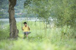 Un Été à Quchi Liang-yu Yang photo 1 sur 12