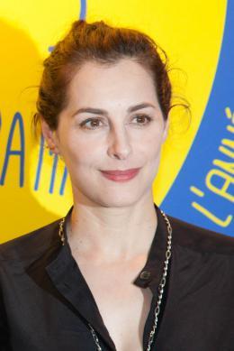 Amira Casar Les Nuits en Or de l'Acad�mie des C�sar 2014 photo 6 sur 107