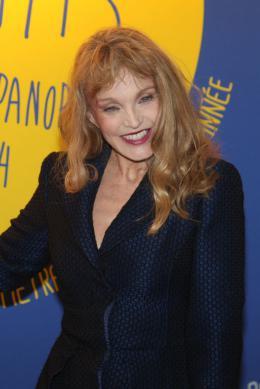 Arielle Dombasle Les Nuits en Or de l'Académie des César 2014 photo 5 sur 24