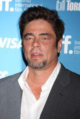 photo 33/41 - Benicio Del Toro -Toronto 2014 - Escobar : Paradise Lost - © Isabelle Vautier pour CommeAuCinema.com