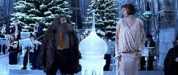 photo 23/163 - Robbie Coltrane et Frances de la Tour - Harry Potter et la coupe de feu
