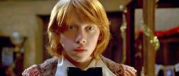 photo 49/163 - Rupert Grint - Harry Potter et la coupe de feu