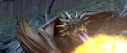 photo 52/163 - Dragon - Harry Potter et la coupe de feu