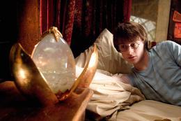photo 61/163 - Daniel Radcliffe - Harry Potter et la coupe de feu