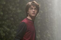 photo 65/163 - Daniel Radcliffe - Harry Potter et la coupe de feu
